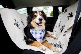 diy washable dog car seat cover