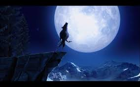 wolf howling wallpaper. Contemporary Howling Wolf Howling At The Moon Wallpapers  Wallpaper Cave To G