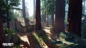 new black ops  multiplayer map 'redwood' revealed  charlie intel