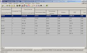 Отчет таможенного брокера Программы для таможенного оформления  Отчет таможенного брокера