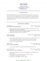 Unusual Sales Manager Profile Resume Catering Sales Resume Targer