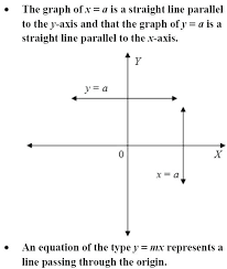 solving equations with 2 variables math class 9 mathematics linear equation in two variables important topics