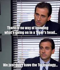 Office Quotes Simple The Office Quotes