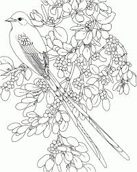 Small Picture Hawaiian Flower Coloring Pages Printable Coloring Pages