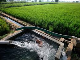 Sustainable Earth Water National Geographic