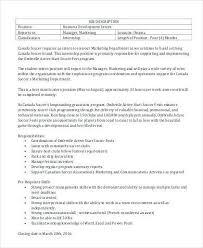 Business Intern Job Description | Cvfree.pro