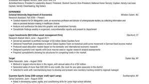 Usa Jobs Resume Writer Resume Federal Resume Writing Services Glorious Federal Resume 83