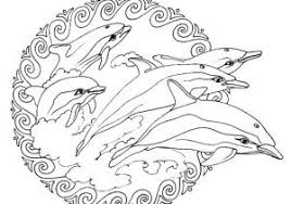 Kleurplaten Mandala Dolfijnen Ideeën Mandala Kleurplaten Voor Jong