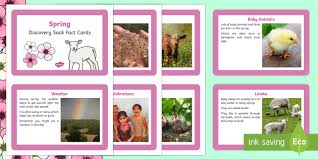 Spring Photo Cards Eyfs Spring Fact Cards Eyfs Early Years Season Non