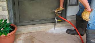 Image result for How To Find A Quality Termite Company In Santa Clara