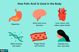 Folic Acid Benefits Side Effects Dosage And Interactions