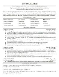 finance director cv template cv templat manager cv template best financial executive cfo
