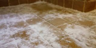 Best way to remove black mold from tile and grout | Curious Nut