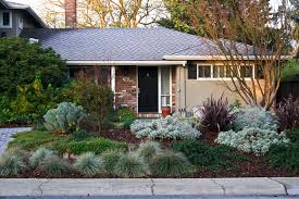 Small Picture Stop Mowing Your Lawn Drought tolerant Yards and Google search