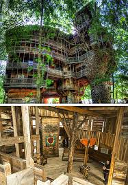 The 5 Most Unique Hotels In America  Tampa Hotels TodayLargest Treehouse In America