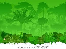 jungle background clipart. Contemporary Clipart Vector Seamless Tropical Rainforest Jungle Background Throughout Background Clipart N