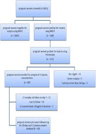 Pregnancy Day By Day Chart Patient Recruitment Flow Chart For The Malaria In Pregnancy
