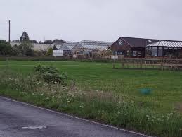ward toll garden centre