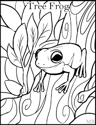 Small Picture Tree Frog Coloring Page Clip Art Library