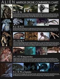 Alien Chart Alien Drone Comparison Chart Avp Universe