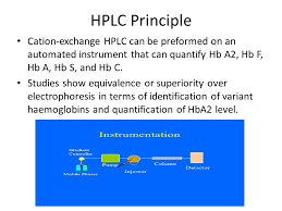 Hplc Principle 3rd Basic Hematopathlogy Course Ppt Video Online Download