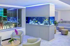 aquarium office. Office Fish Tanks - So Relaxing! Aquarium