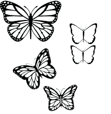 Outline Of A Butterfly Printable Related Post Outline Butterfly