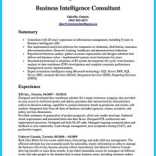 Intelligence Resume Business Intelligence Resume Beautiful Bi Manager Resume Sample 23