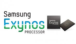Two chips of the Samsung Exynos Processor