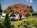 imagem de Iporã do Oeste Santa Catarina n-7