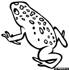 Small Picture Poisonious Frogs Coloring Coloring Pages