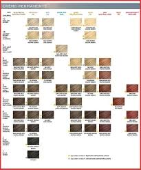 Ion Demi Color Chart 132146 Clairol Professional Creme