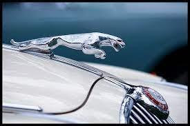 Yet Another Hood Leaper Jaguar Daimler Jaguar Car Jaguar S Type