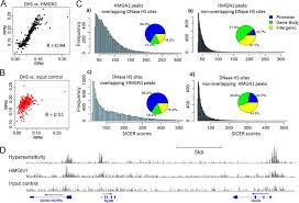 Colocalization Of Hmgn1 And Dnase I Hypersensitivity Sites