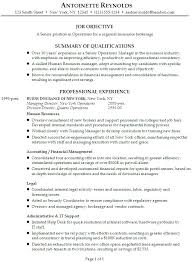 Internal Resume Template Delectable Resume Template For Internal Promotion Resume For Promotion