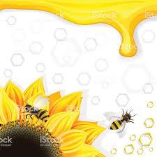 подсолнухи и пчел которые медовыми сотами свисают фон с стоковая