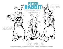 Peter Rabbit Printable Activity Sheets Jinxy Kids