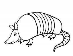 Small Picture Armadillo Cartoon Pictures ClipArt Best school ideas