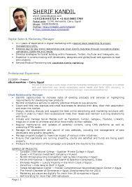 Digital Marketing Resume Example Essaymafia Com