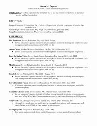 Resume Format For Bartender Fresh Chic Restaurant Head Waiter Resume