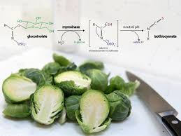 brussels sprouts and health