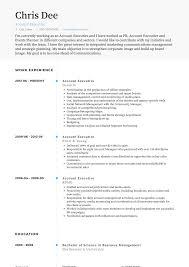 Cv Account Account Executive Resume Samples And Templates Visualcv