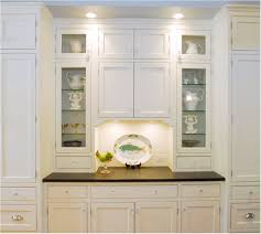 Door Design Contemporary Kitchen Cabinets With Glass Doors Frosted