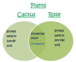 Venn Diagram Plants Venn Diagram Plants Under Fontanacountryinn Com