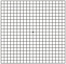 This Is An Amsler Grid It Is Used To Check For Changes In