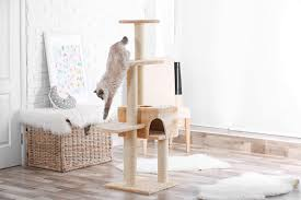 cat trees are typically covered in fabric that cats can scratch rub on and climb on try to look for thick covers that are also comfortable