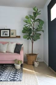 how to decorate mid century modern decor bring in lots of plants a colorful