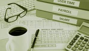 Why To Invest In Online Payroll Software Empxtrack