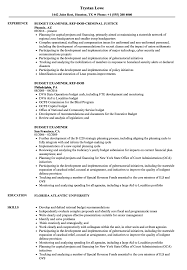 Budget Examiner Resume Samples Velvet Jobs