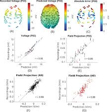 Motor Points For Electrical Stimulation Chart Measurements And Models Of Electric Fields In The In Vivo
